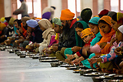 Thousands of Sikh pilgrims get free meals at the Langar of the Golden Temple in Amritsar, Punjab.