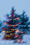 Outdoor Christmas Tree with lights and blurred motion.
