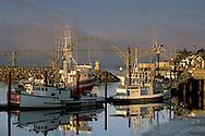 Fog at sunrise over commercial fishing boats in harbor and Yaquina Bay Bridge, Yaquina Bay, Newport, Oregon Coast