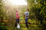 26 September 2012 - Kaitlynn Placzek and Gabriel Guzman's engagement session at the Kimmel Apple Orchard in Nebraska City.