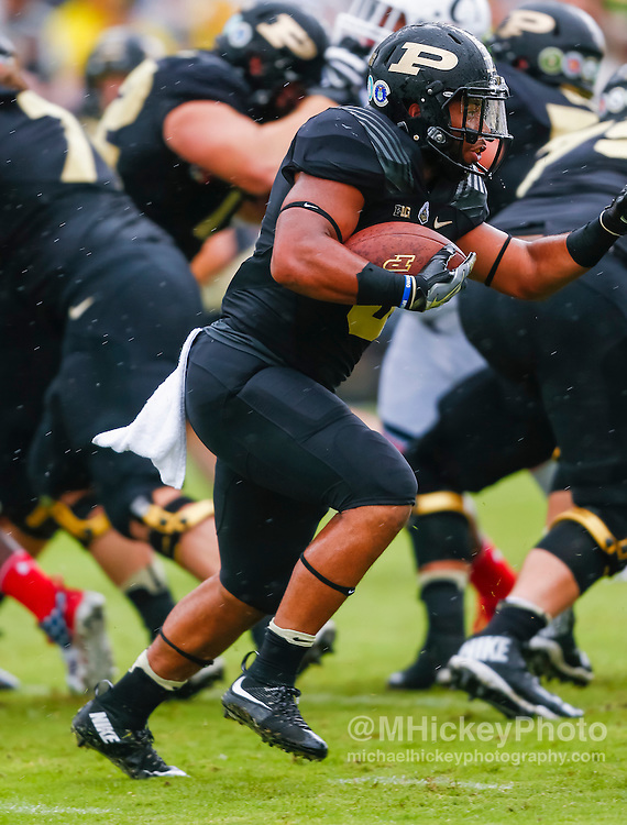 WEST LAFAYETTE, IN - SEPTEMBER 10: Markell Jones #8 of the Purdue Boilermakers runs the ball during the game against the Cincinnati Bearcats at Ross-Ade Stadium on September 10, 2016 in West Lafayette, Indiana.  (Photo by Michael Hickey/Getty Images) *** Local Caption *** Markell Jones