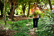 Contagem_MG, Brasil...Produtora de flores de comestiveis, suas flores sao vendidas em restaurantes e supermercados de Belo Horizonte...The edible flowers, this flowers are seller in the restaurants and the supermarkets in Belo Horizonte...Foto: LEO DRUMOND / NITRO