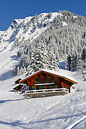 Swiss chalets on the alpine slopes under winter snow near Bort - Grindelwald, Swiss Alps, Switzerland .<br /> <br /> Visit our SWITZERLAND  & ALPS PHOTO COLLECTIONS for more  photos  to browse of  download or buy as prints https://funkystock.photoshelter.com/gallery-collection/Pictures-Images-of-Switzerland-Photos-of-Swiss-Alps-Landmark-Sites/C0000DPgRJMSrQ3U