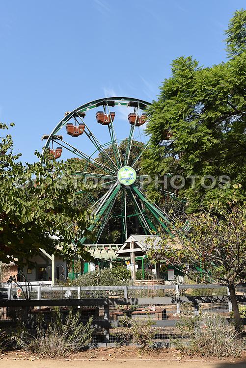 Closeup of the 50 Monkeys Ferris Wheel at the Santa Ana Zoo