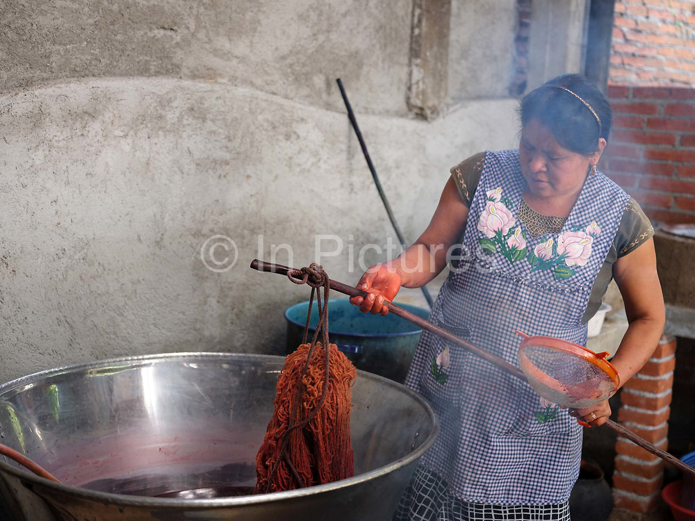 Master dyer Juana Gutierrez Contreras overdyeing pericon Mexican tarrigon dyed wool with cochineal in the Zapotec weaving village of Teotitlan del Valle in Oaxaca, Mexico on 29 November 2018