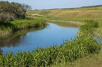 DOMBURG -  hole 7/16 van de Domburgsche Golf Club in Zeeland (Walcheren) .  COPYRIGHT KOEN SUYK