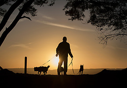 © Licensed to London News Pictures. 05/01/2017. Chilworth UK.  A man walks his dogs at sunrise on St Martha's Hill in the North Downs.  A continuing cold spell has seen temperatures as low as -6 in some areas. Photo credit: Peter Macdiarmid/LNP
