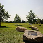 20140723 Tree Grove