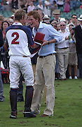 Mark Tomlinson and Prince Harry,  Cartier International Polo. Guards Polo Club. Windsor Great Park. 30 July 2006. ONE TIME USE ONLY - DO NOT ARCHIVE  © Copyright Photograph by Dafydd Jones 66 Stockwell Park Rd. London SW9 0DA Tel 020 7733 0108 www.dafjones.com