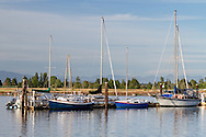Sailboats moored at Ward's Marina on the Nicomeckl River.  Photographed from Elgin Heritage Park in Surrey, British Columbia, Canada