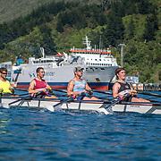 Picton Harbour (NZL)
