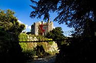 Photographer: Chris Hill, Birr Castle, Offaly