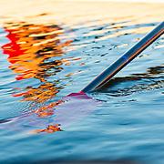 03/28/2019 - Women's Rowing Practice