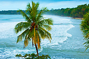 Cahuita is a small beach town on the southern Caribbean coast of Costa Rica. It is the gateway to Cahuita National Park. The park's coastal jungle environment can be seen in the background.