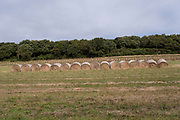 Hay bales rolls in a line on 17th September 2021 in Pont Croix, Brittany, France. Brittany is a peninsula, historical county, and cultural area in the west of France, covering the western part of what was known as Armorica during the period of Roman occupation. It became an independent kingdom and then a duchy before being united with the Kingdom of France in 1532 as a province governed as a separate nation under the crown.