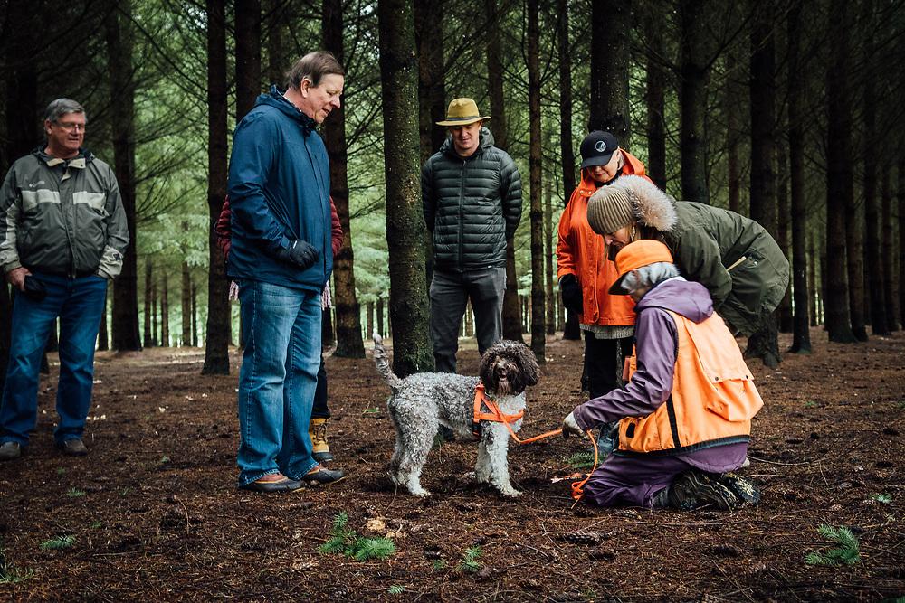 Oregon Truffle Hunt