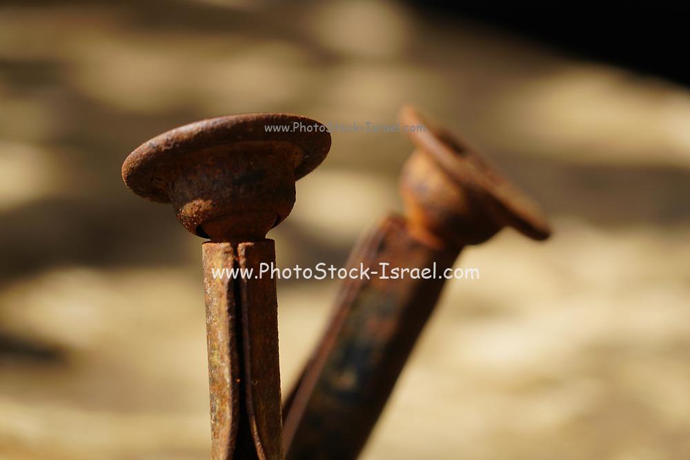 bent and crooked Rusty Nails closeup