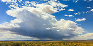 Rain cloud over vast expanse in the Navajo Reservation. Taken May 16, 2016, on U.S. Highway 89, running parallel to vermillion Echo Cliffs in Arizona.