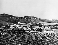 1906 Looking northeast at Los Feliz and Immaculate Heart High School (center)
