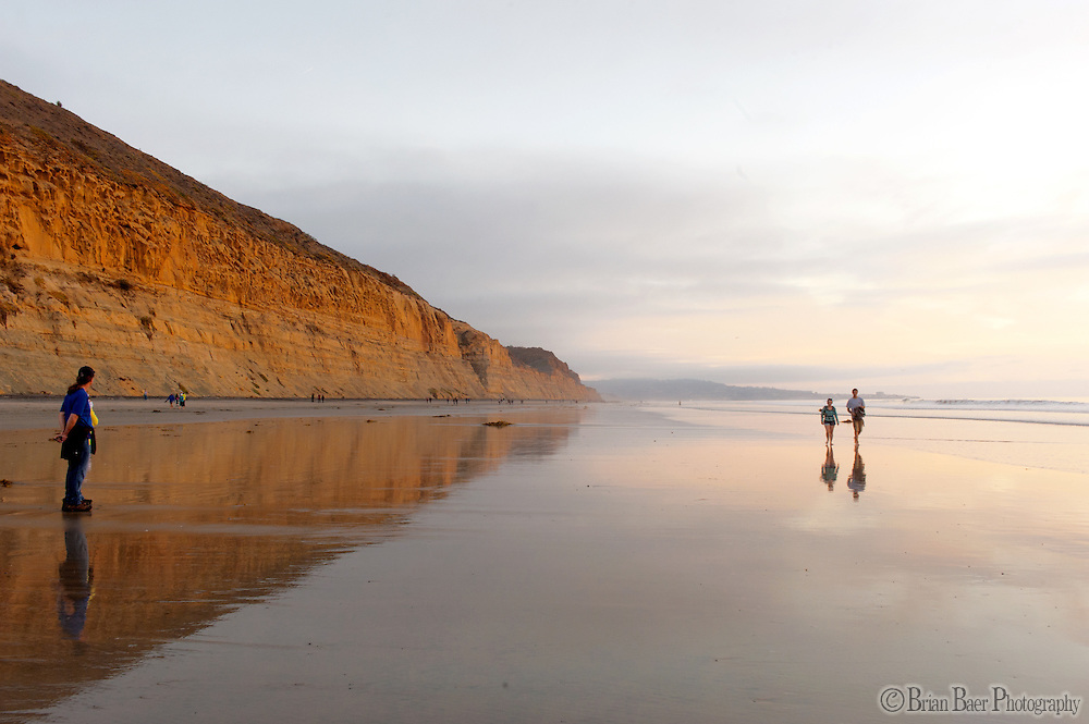 090-P82131<br /> <br /> Torrey Pines State Beach<br /> ©2014, California State Parks<br /> Photo by Brian Baer