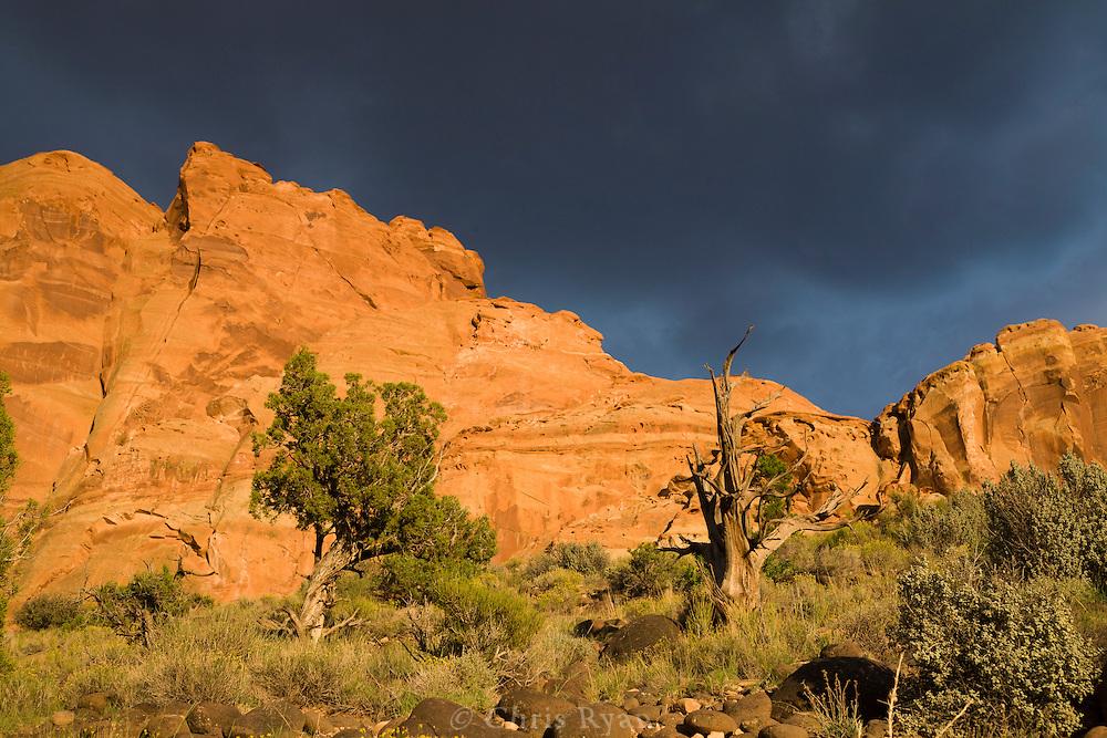 Desert cliffs lit by sunset beneath thunderclouds, Capitol Reef National Park, Utah