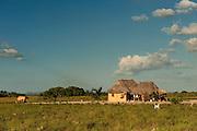 Macushi Amerindian House<br /> Savannah<br /> Rupununi<br /> GUYANA<br /> South America