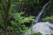 Raymondskill Water Falls, Milford, PA,