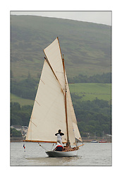 Seabird, recently built Gaff Cutter from France, off the shore of Fairlie prior to the start of the last day's racing...This the largest gathering of classic yachts designed by William Fife returned to their birth place on the Clyde to participate in the 2nd Fife Regatta. 22 Yachts from around the world participated in the event which honoured the skills of Yacht Designer Wm Fife, and his yard in Fairlie, Scotland...FAO Picture Desk..Marc Turner / PFM Pictures