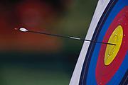 Archery target and arrow.