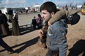 Refugees, Syrian border, Turkey
