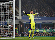 Maarten Stekelenburg of Everton  during the English Premier League match at Goodison Park, Liverpool. Picture date: December 19th, 2016. Photo credit should read: Lynne Cameron/Sportimage