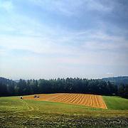 Landscape. #czechrepublic #latergram #landscape #field #colors #semily #path #field #dailylife
