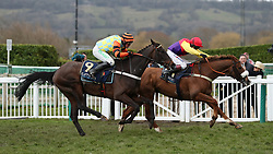 Native River ridden by Richard Johnson (right) with Might Bite ridden by Nico de Boinville on their way to victory in the Timico Cheltenham Gold Cup Chase during Gold Cup Day of the 2018 Cheltenham Festival at Cheltenham Racecourse.