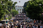 Protestors stretch for more than five blocks, from Scott Circle NW to H Street NW, during demonstrations over the death of George Floyd near the White House on June 6, 2020 in Washington, United States.