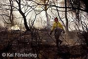 Valencia, 25/07/05. Una brigada forestal recorre parte de la zona quemada en el incendio que se ha declarado esta tarde en el perímetro del parque natural de La Albufera.