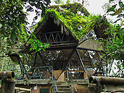 Green plants cover the roof of the Geodesic Dome lodging in the forest canopy at Bellavista Cloud Forest Reserve, less than 2 hours drive from Quito, Ecuador, South America.
