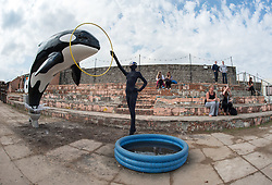 © Licensed to London News Pictures. 22/08/2015. Weston-super-Mare, North Somerset, UK.  A model of a killer whale leaps out of an old toilet bowl towards a paddling pool on the first main day of BANKSY's Dismaland show at the old Tropicana on Weston seafront, when the event is open to the general public. Photo credit : Simon Chapman/LNP