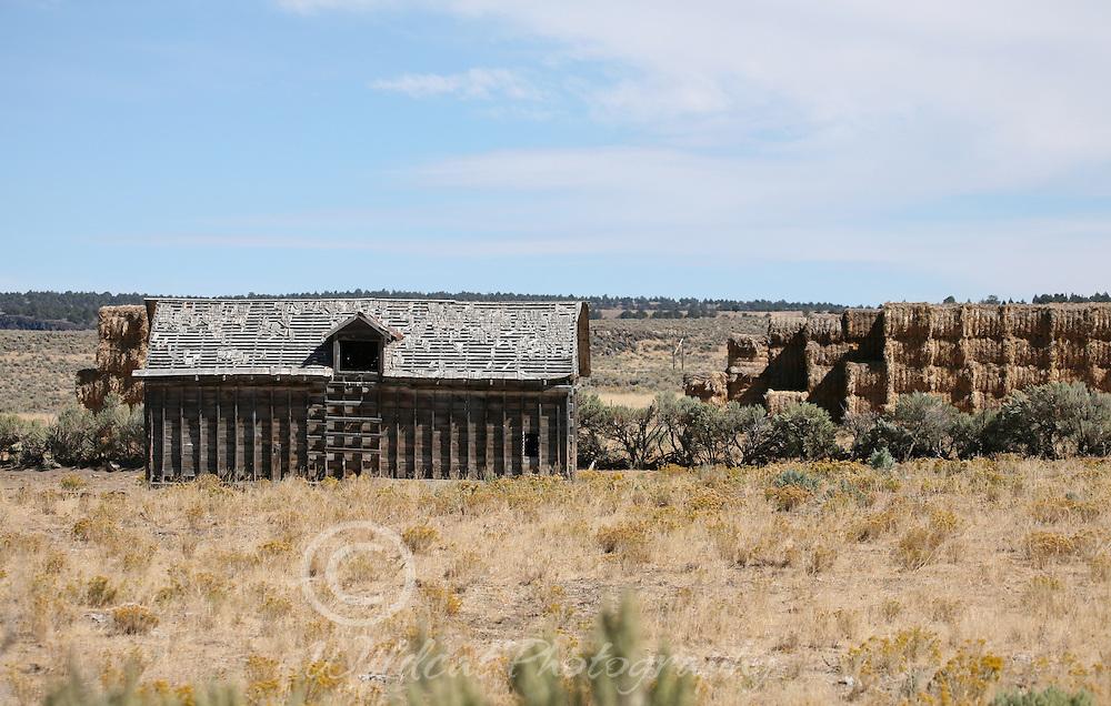 Hay stacks and backwards shed