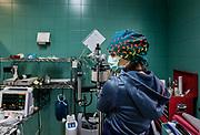 Oristano, Clinica Veterinaria due Mari,