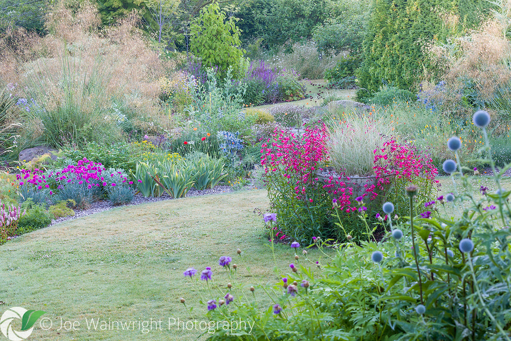 Bluebell Cottage Gardens, Dutton, Cheshire, photographed at dawn in late June