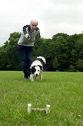 Eddie Sander with his Dogs Jackson and Inka<br /> <br /> 18 June 2004<br /> <br /> Copyright Paul David Drabble<br /> <br /> [#Beginning of Shooting Data Section]<br /> Nikon D1 <br /> <br /> Focal Length: 34mm<br /> <br /> Optimize Image: <br /> <br /> Color Mode: <br /> <br /> Noise Reduction: <br /> <br /> 2004/06/18 09:35:22.5<br /> <br /> Exposure Mode: Manual<br /> <br /> White Balance: Auto<br /> <br /> Tone Comp: Normal<br /> <br /> JPEG (8-bit) Fine<br /> <br /> Metering Mode: Center-Weighted<br /> <br /> AF Mode: AF-S<br /> <br /> Hue Adjustment: <br /> <br /> Image Size:  2000 x 1312<br /> <br /> 1/200 sec - F/8<br /> <br /> Flash Sync Mode: Not Attached<br /> <br /> Saturation: <br /> <br /> Color<br /> <br /> Exposure Comp.: 0 EV<br /> <br /> Sharpening: Normal<br /> <br /> Lens: 17-35mm F/2.8-4<br /> <br /> Sensitivity: ISO 200<br /> <br /> Image Comment: <br /> <br /> [#End of Shooting Data Section]