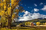 Bitterroot Mountains in fall, Montana.