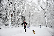 woman running with her dog, Snow covered Mont Royal Park in Winter, Parc du Mont Royal, Montreal, Quebec, Canada