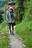 A Nepalese porter carrying chickens, Annapurna Sanctuary, Nepal