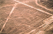 Aerial view of the parrot shape. The Nazca Lines are a group of very large geoglyphs formed by depressions or shallow incisions made in the soil of the Nazca Desert in southern Peru. They were created between 500 BC and 500 AD.
