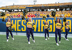 Sep 14, 2019; Morgantown, WV, USA; West Virginia Mountaineers dancers cheer during the first quarter against the North Carolina State Wolfpack at Mountaineer Field at Milan Puskar Stadium. Mandatory Credit: Ben Queen-USA TODAY Sports