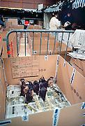 Frankrijk,Vannes, 10-01-2000..Geredde vogels in de opvang. Olievervuiling door het zinken van de olietanker Erica en de schoonmaak door vrijwilligers. De oliemaatschappij Total staat nu, vanaf 12-2-2007 terecht voor de gevolgen. Veel hulpverleners hebben een verhoogde kans op kanker, omdat destijds met beperkte bescherming werd gewerkt, en tienduizenden vogels kwamen om vanwege dit ongeluk met deze tanker voor de kust...Foto: Flip Franssen/Hollandse Hoogte