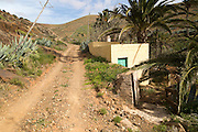 Sandy track in fertile valley farmland, Betancuria, Fuerteventura, Canary Islands, Spain
