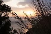 * Les dernières heures, Corse