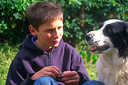 A0741N Eleven year old boy with his pet collie sheepdog